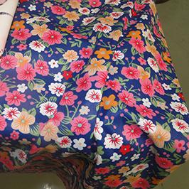 Mostra digjitale të shtypjes së tekstilit 1 me printer tekstil dixhital WER-EP7880T